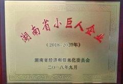 湖南精城特种陶瓷有限公司被认定为湖南省小巨人企业